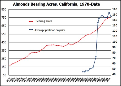 Acres of bearing almond trees in California