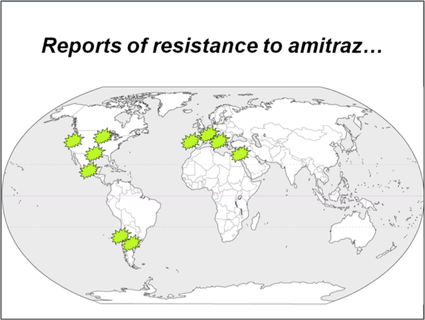 "Figure 1. I've placed green stars in those areas where amitraz has either anecdotally or scientifically been confirmed as losing efficacy against varroa. Beekeepers, by not practicing ""pest resistance management,"" keep shooting themselves in the foot."