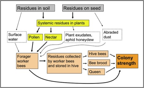 Neonicotinoids trying to make sense of the science scientific figure 1 ccuart Images