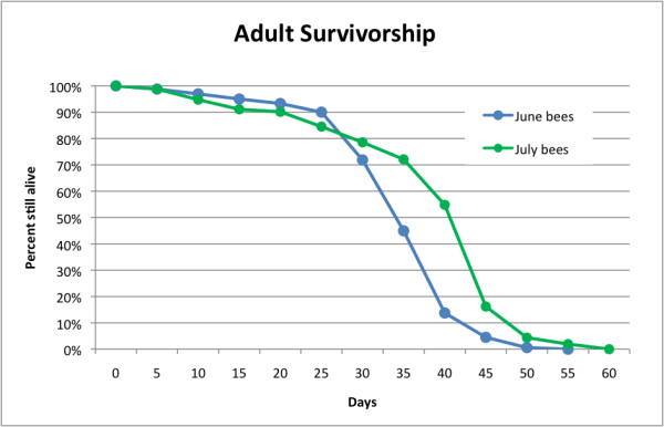 Figure 2. Adult Survivorship