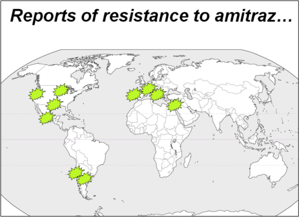 Figure 3. The green explosions indicate areas in which researchers or beekeepers have reported decreased efficacy or failure of amitraz to control varroa.