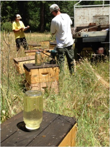 Figure 3. Eric and Ian are seasoned field researchers, meticulous at following protocols and data collection.