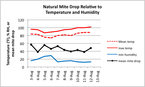 Figure 7.  Mean daily mite drop for 10 hives relative to environmental factors. There was rain in the apiary on 5 August.  Although temperature and humidity varied a fair amount, I don't see any particular relationship between environmental factors and natural mite drop.