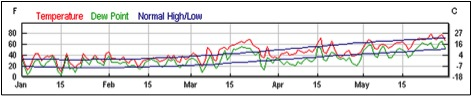 Figure 7.  Western New York experienced extraordinarily warm weather (followed by cold) in May.  I find that such weather anomalies can result in piles of dead bees in front of hives due to short-term starvation events.  Weather graph from www.weatherunderground.com.