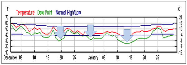 Figure 9.  Chilling events (blue arrows) in Modesto, California this winter (the dark blue lines represent normal highs and lows).  The unusual chilling in late December and early January (hitting the '20's in a number of areas) came at the time when colonies normally begin to build up for almonds.  This severe (for California) cold set the already-stressed colonies back hard, and may have allowed nosema and viruses to gain the upper hand.  Graph from wunderground.com.  At the national convention in January, the first reports of beekeepers with collapsing operations were heard.  But still, the industry was in denial, with an apparent glut of promised bees as late as the end of the month (two weeks before start of bloom)!  But when the rubber finally hit the road in mid February, that illusory supply quickly evaporated, with desperate growers and brokers scrambling to obtain bees—some offering obscenely high prices for substandard colonies. And then, due to the cool spring, the trees held off on blooming for an extra 10-14 days [ ]--colonies placed in anticipation of normal start of bloom just sat there starving and shivering on the cold orchard floors.