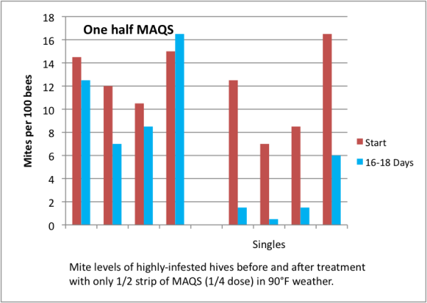 Figure 14.  Half of one MAQS didn't do much good in a double, but was remarkably effective in small singles in hot weather.