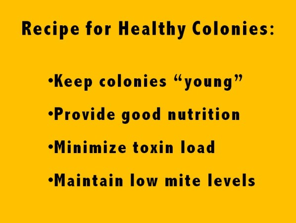 recipe for healthy colonies