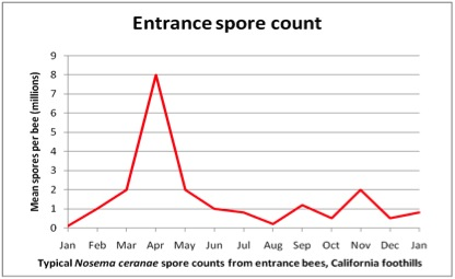 Entrance Spore Count