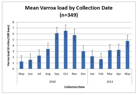 Mean Varroa Load by Collection Date