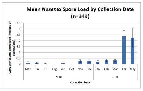 Mean Nosema Spore load by Collection Date