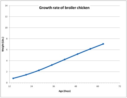 Growth Rate of Broiler Chicken