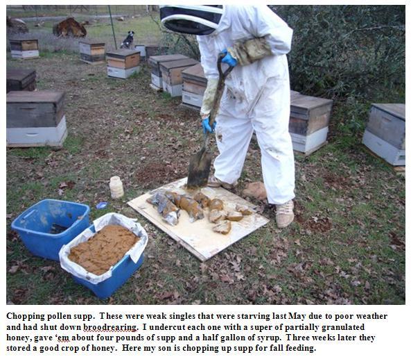 Chopping pollen supplement