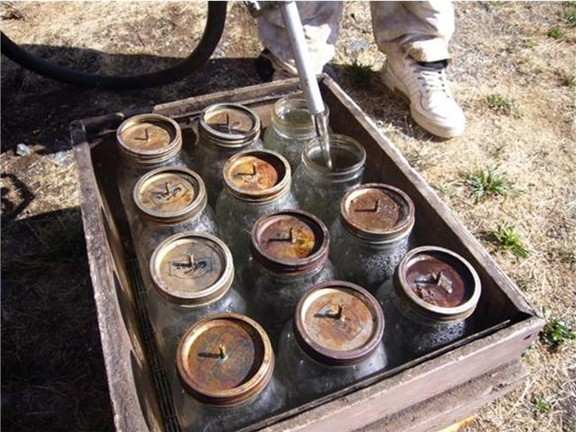 Jars in a bee box