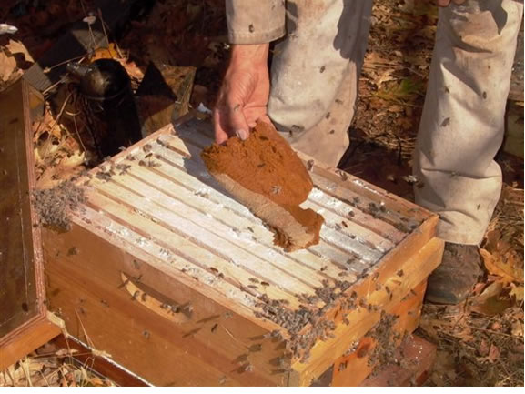 Combine dusting with other hive procedures