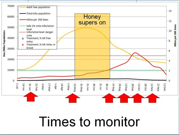 Times to monitor jpg